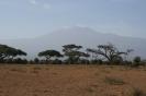 Kilimand�aro