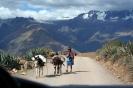 Peru - wysoko w Andach